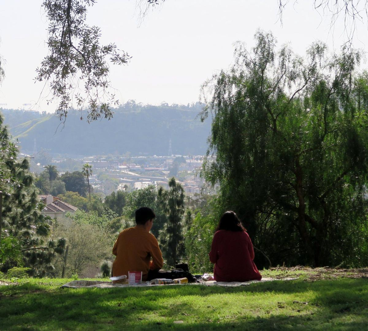 Picnic with a view from Debs Park