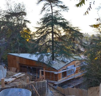Echo Park architect's new take on the tree house