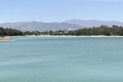 Algae bloom ruled out as cause of Silver Lake Reservoir's green water