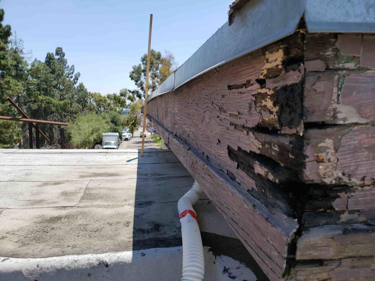 roof beam.jpg