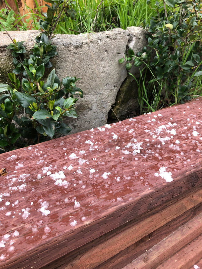 Rain & Hail: An afternoon of wild weather