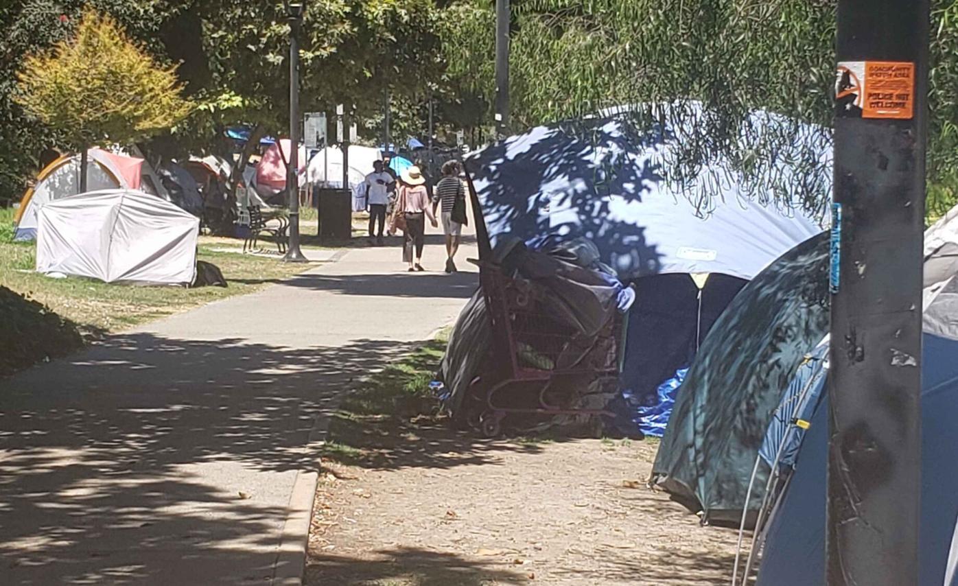 Homeless tents along Echo Park Lake's west bank