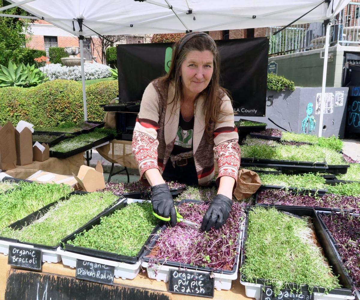 Laurette Lavin -- aka Microgreen Mama -- at the Silver Lake Farmers Market.