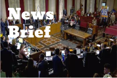news brief city hall.PNG