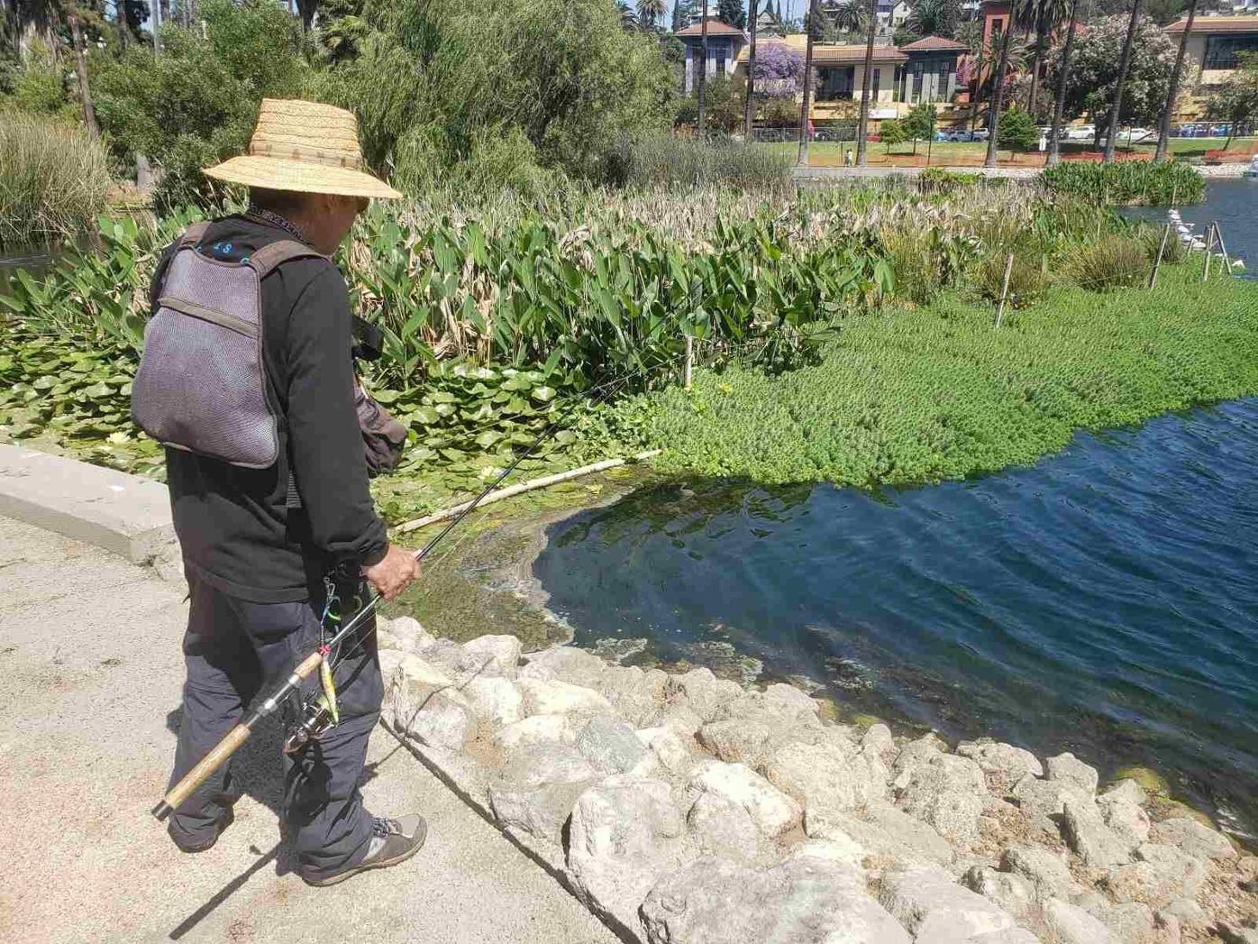 Fisherman at Echo Park Lake reopening