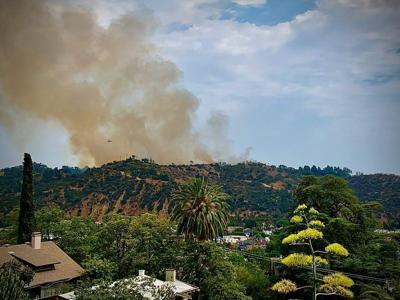 Brush fire burning in Montecito Heights