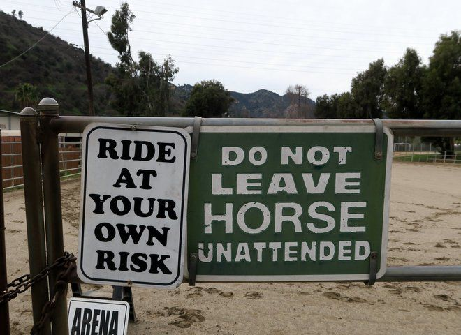 Atwater Village's hidden equestrian community rides into the open