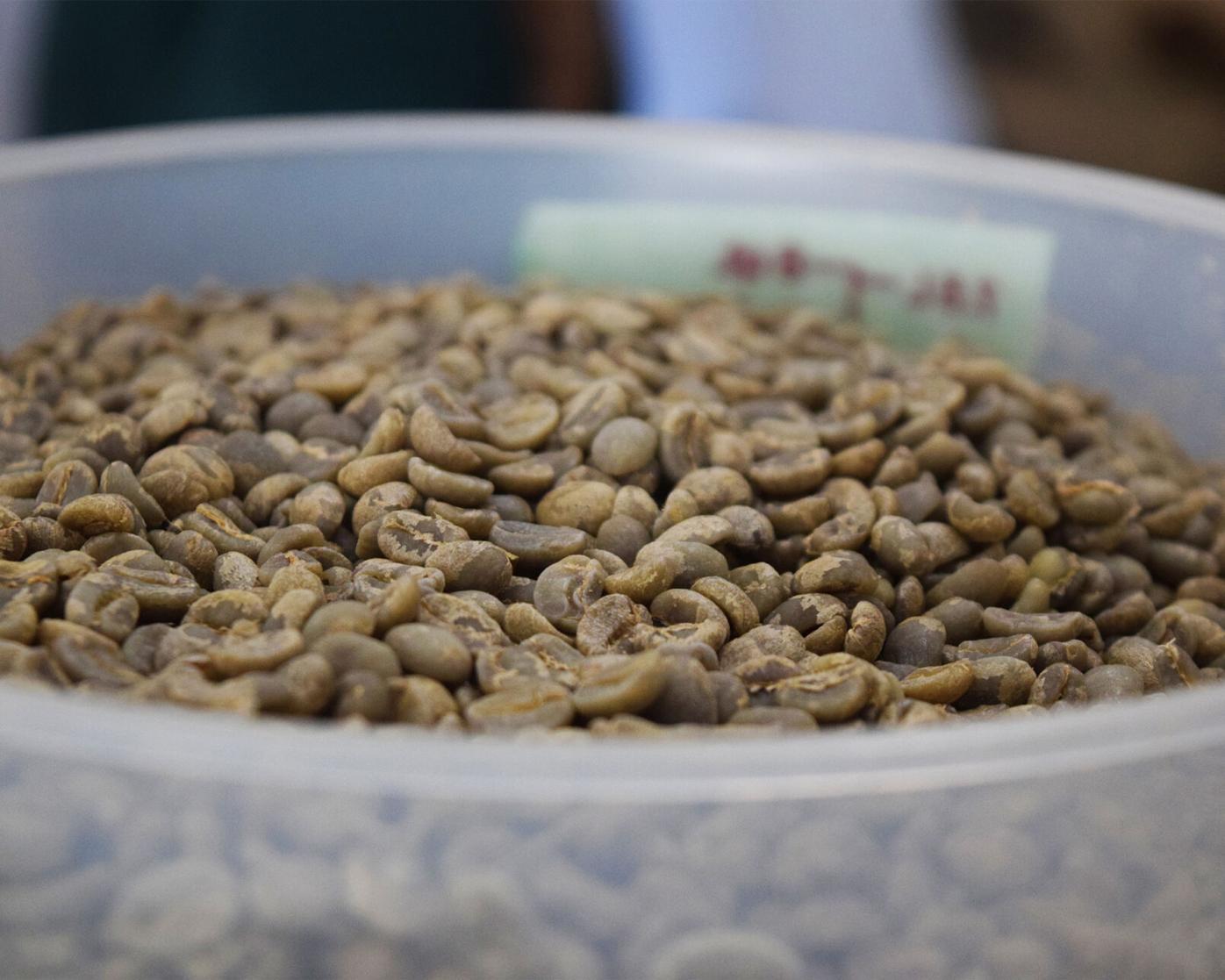 Cafe de Leche - Green Coffee Beans