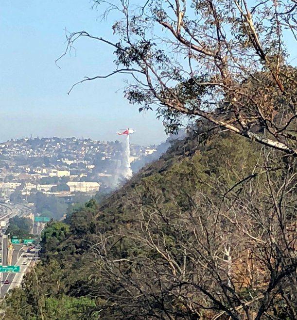 Fire scorches Elysian Park hillside