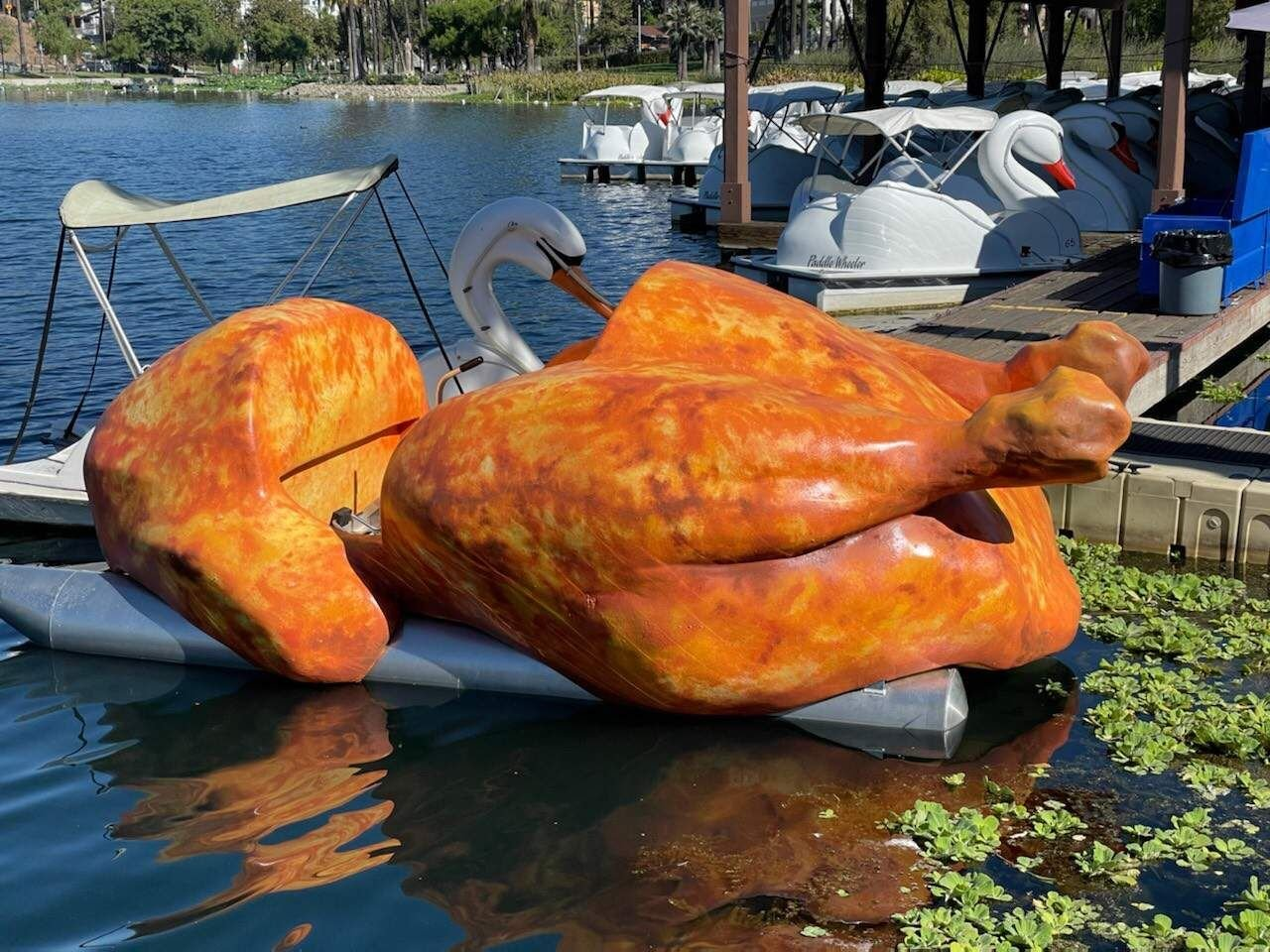 floating roasted chicken echo park lake martin cox close up.jpg