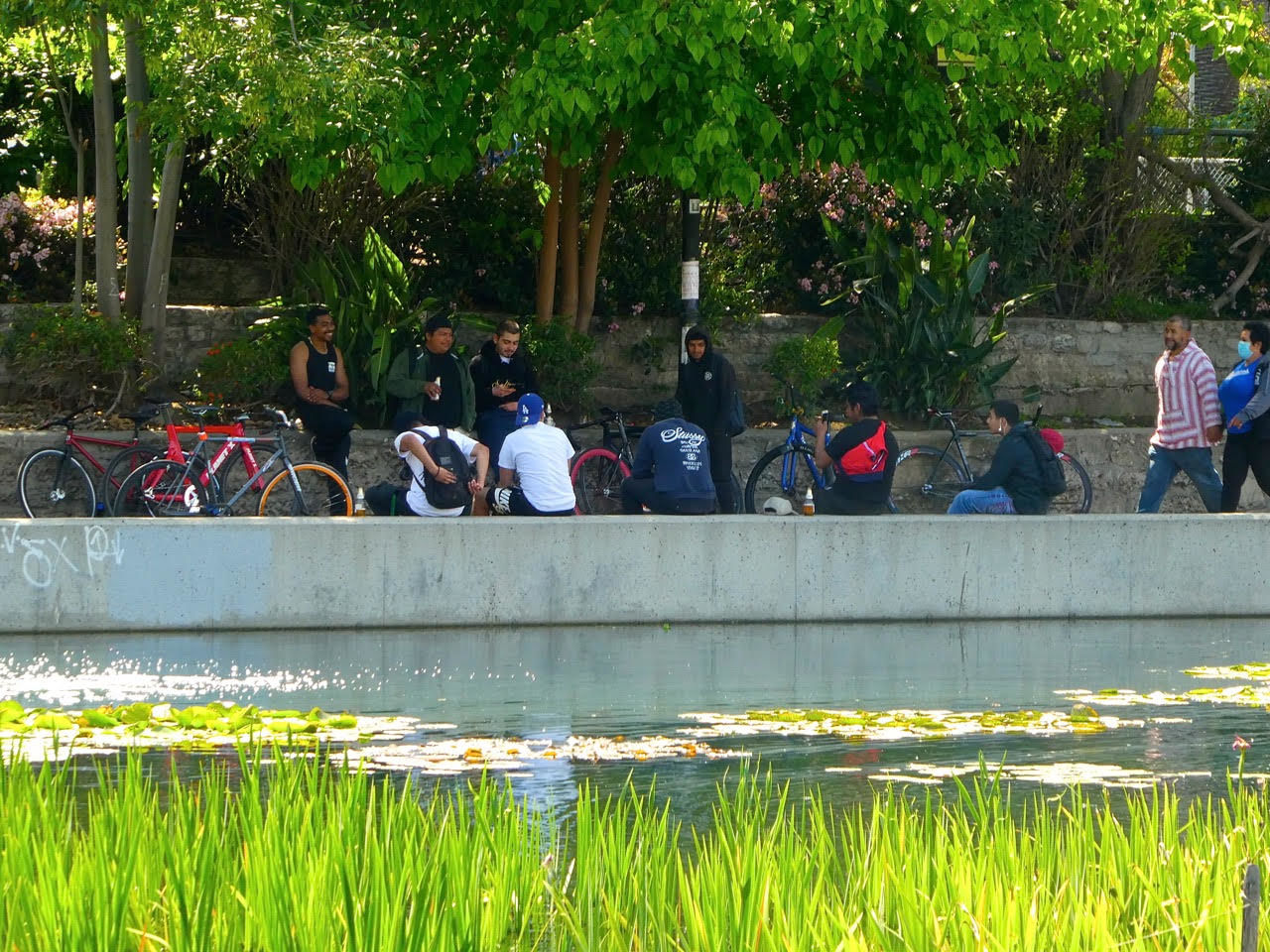 guys hanging out at echo park lake sandy driscoll.jpg