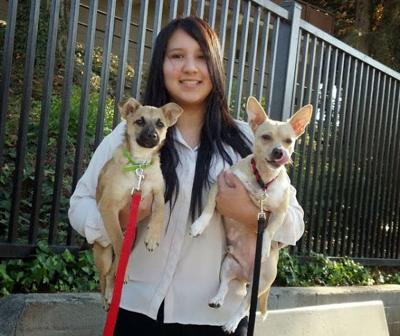 Changing pet owner attitudes means fewer stray animals on the streets of Boyle Heights