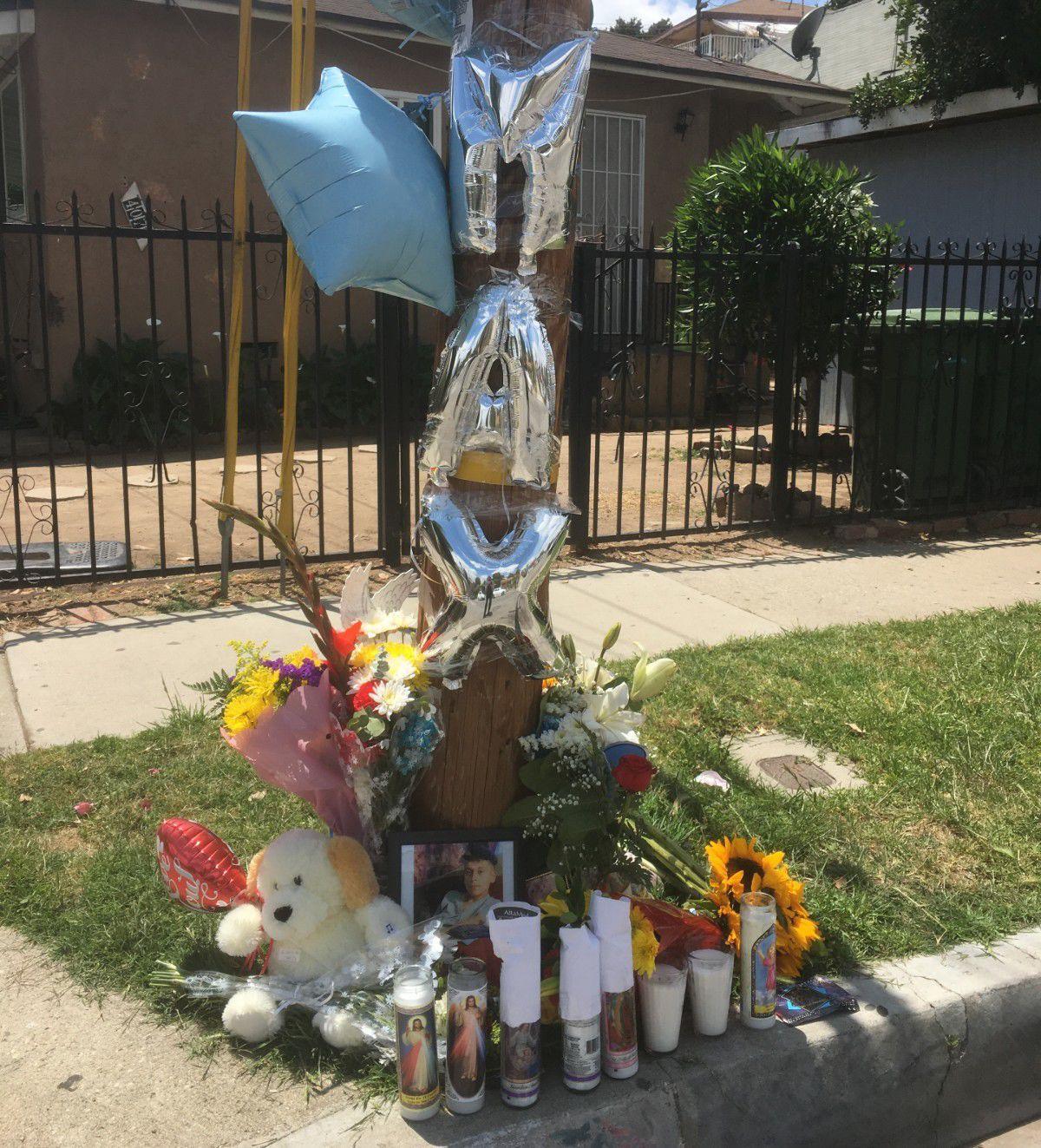 Memorial to Max on San Carlos Street in East LA.