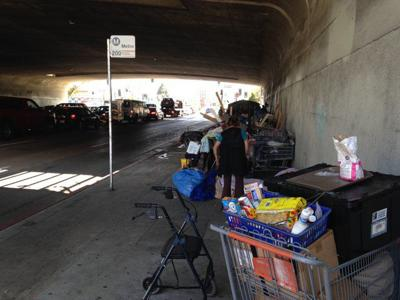 Echo Park homeless encampment under 101 Freeway at Alvarado