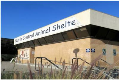 $20 million project will put sinking Lincoln Heights animal shelter on a more stable foundation