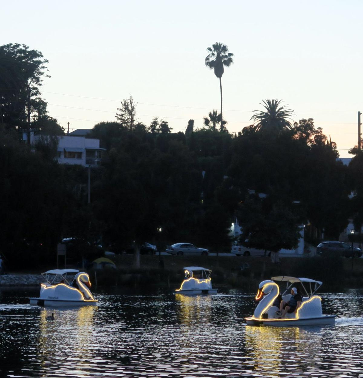 Echo Park Lake Swan Boats with lights 6-22-2019 8-43-24 PM.JPG