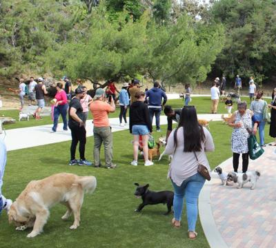 Eagle Rock Dog Park opening Day