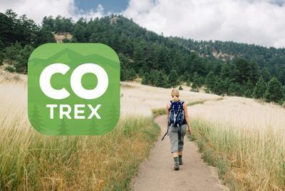 CO Trex logo