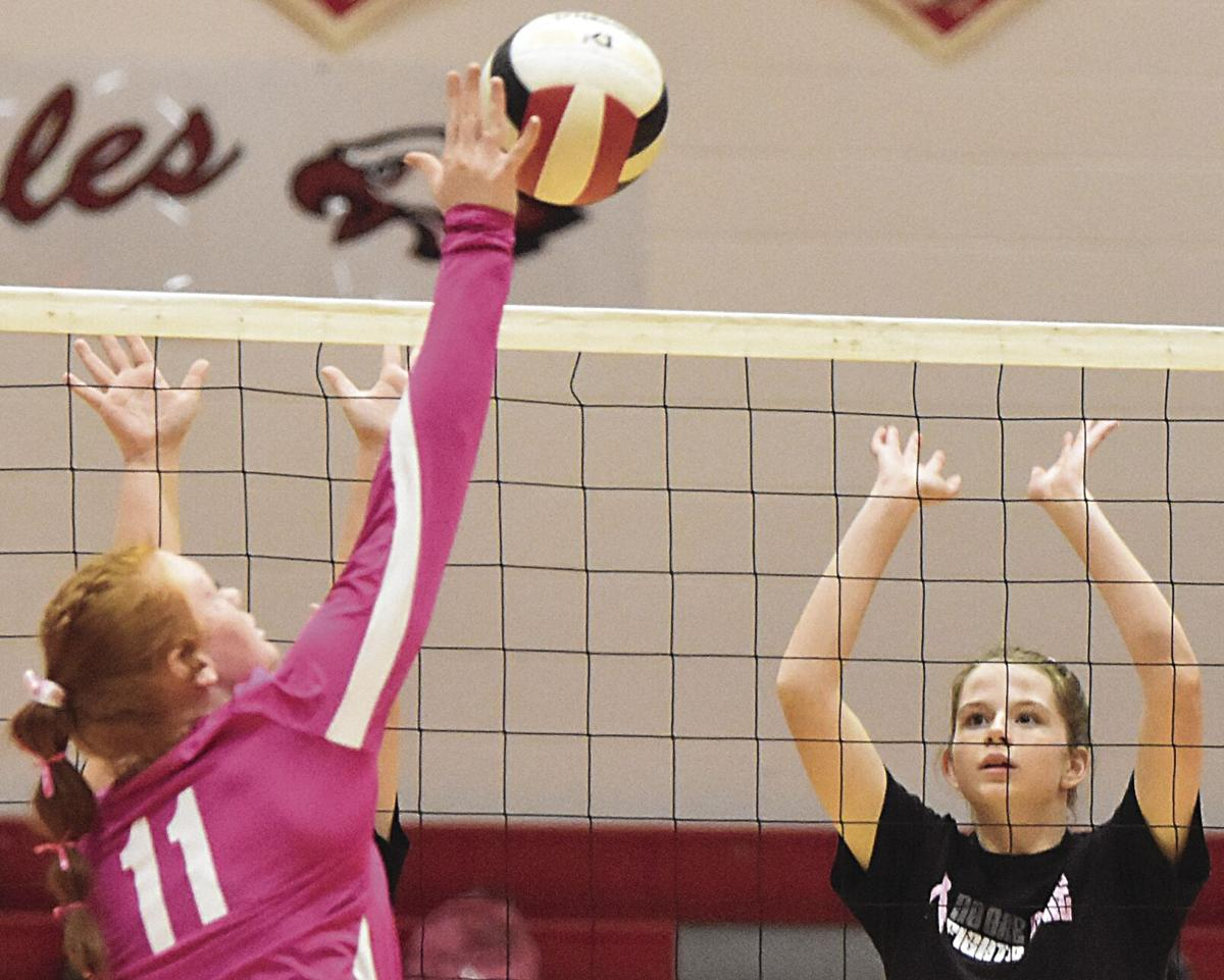 Eagles force first-place tie in Blue Ridge