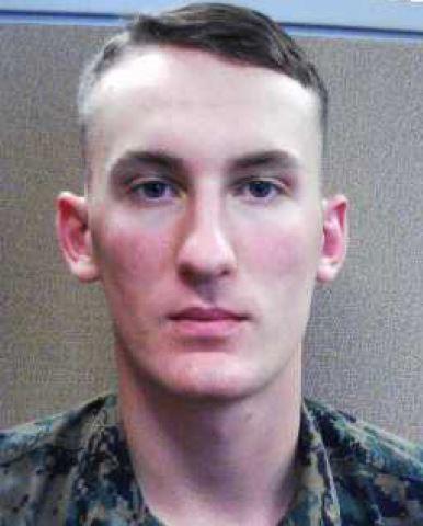 Hardy homicide suspect Michael Alexander Brown