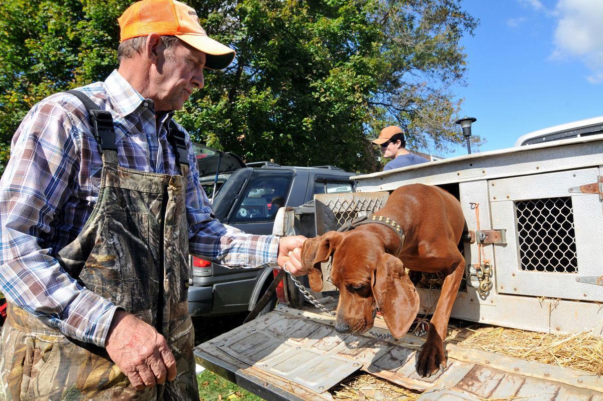 Coon dog Blue Ridge Folklife