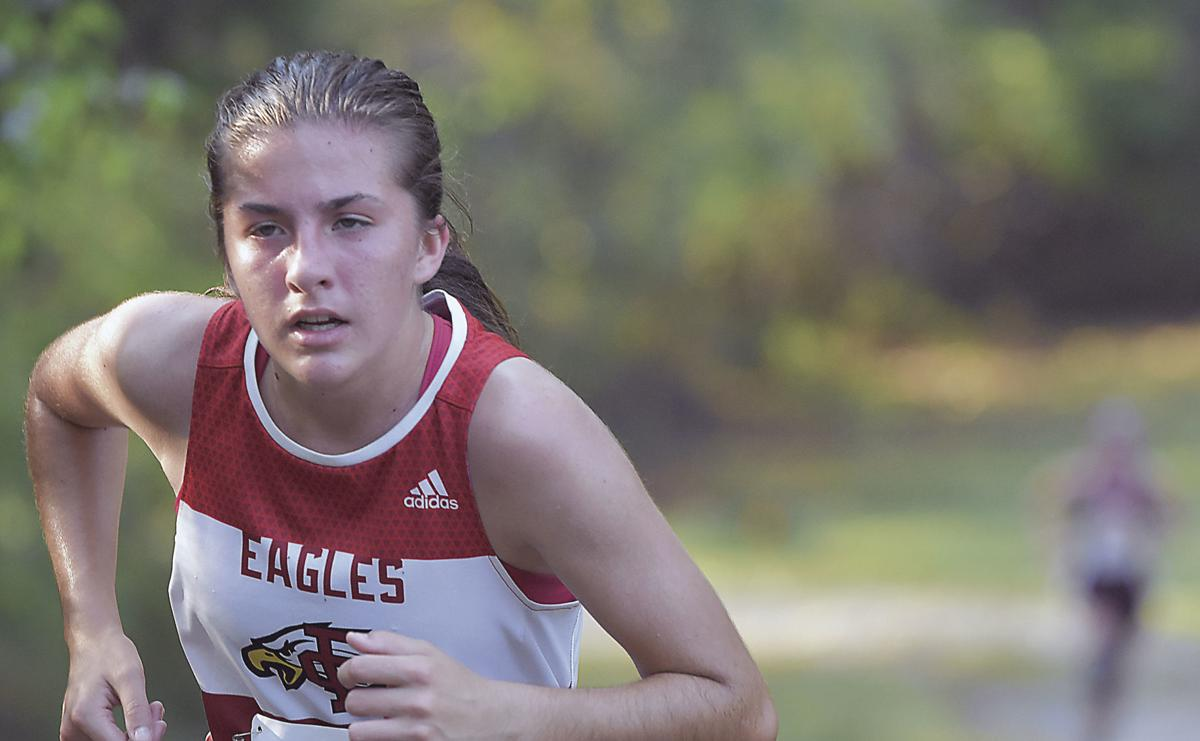 Eagles sweep Blue Ridge District preview on home course