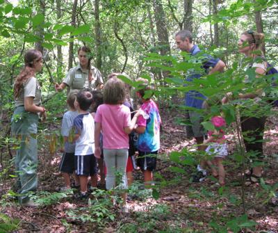 Woodsy Owl Curiosity Club