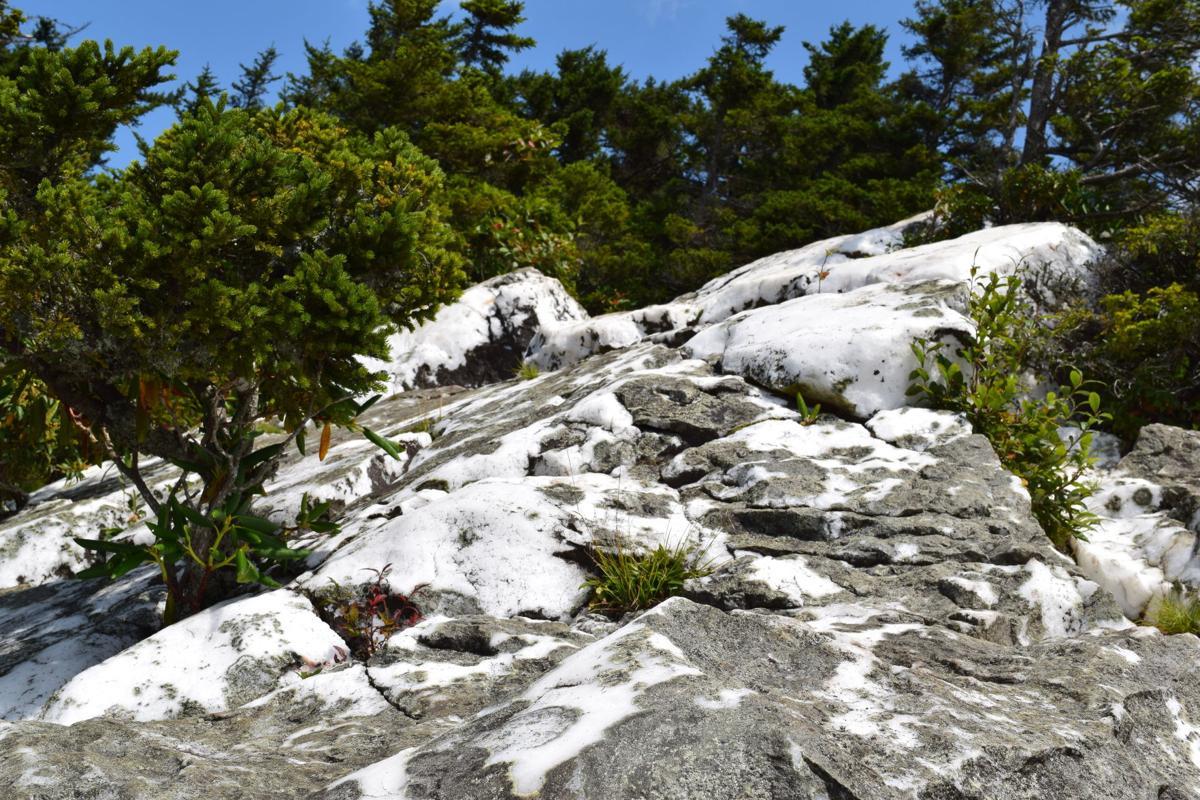 Shining Rock Outcropping