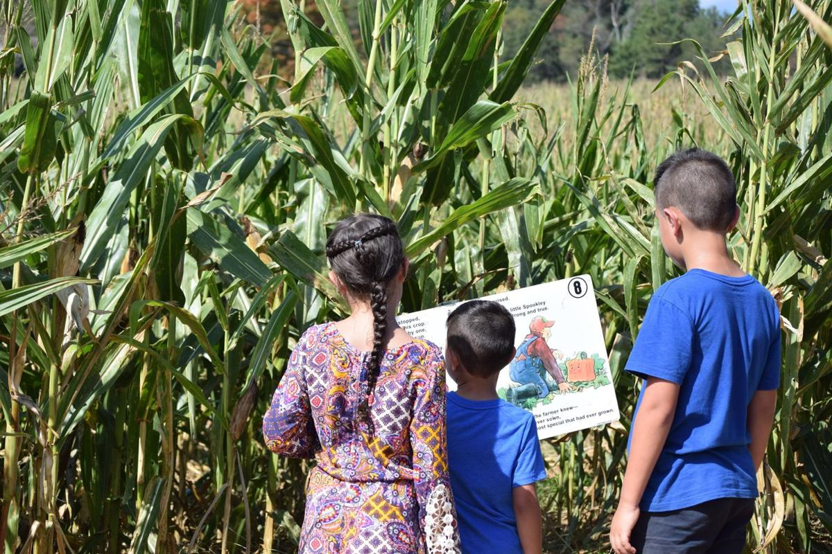 Eliada corn maze