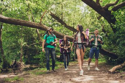 Trekking, camping and wild life concept