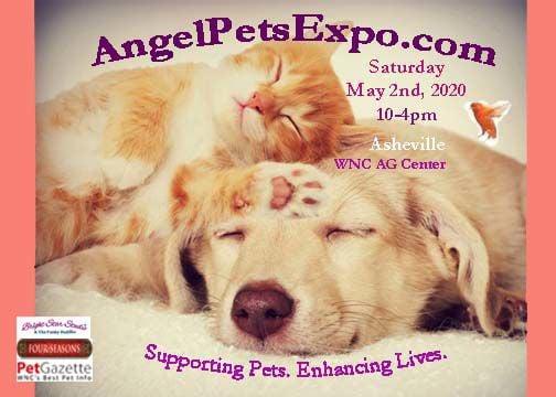 Angel Pets Expo 2020