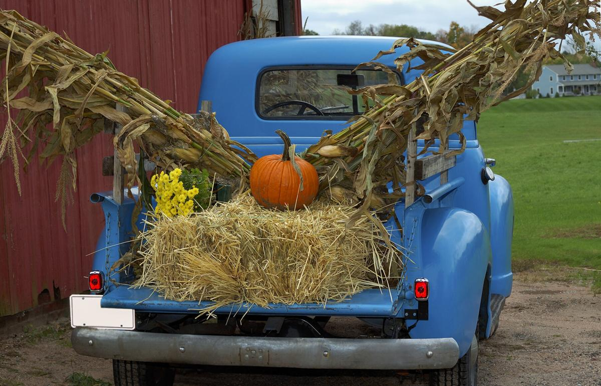 Old Blue Pick-Up Truck in Fall Harvest Farm Scene