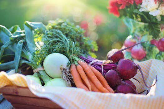 Farm Dinner stock