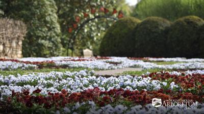 NC Arboretum quilt garden 2021
