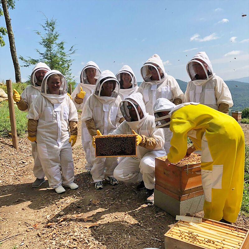 KBH tour inspecting the hive