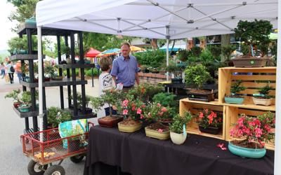 Garden Jubilee downtown - COURTESY of Henderson County Tourism.jpeg