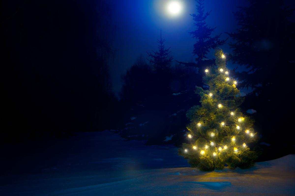 Decorated christmas tree outdoor with christmas lights with moon