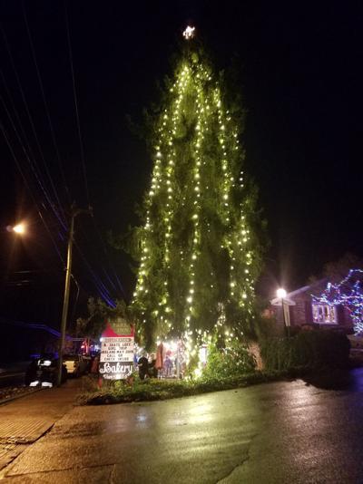 Waynesville town tree.jpg