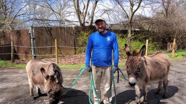 Friends of the WNC Nature Center Donkey Walk.jpg