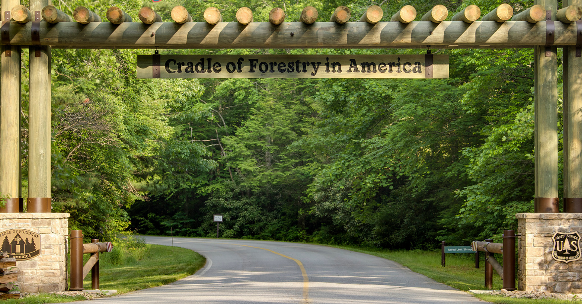 cradle of forestry entrance