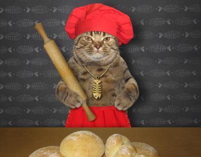 Cat baker
