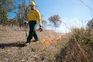 MDC Workshops Teach Prescribed Fire As Land, Wildlife Management Tool Landowners Should Preregister for Their Desired Workshop 1/9/2020