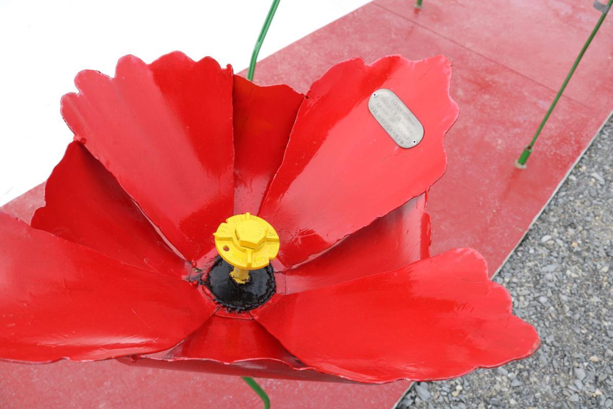 Last of metal poppies installed, dedication planned
