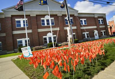 Flags mark sexual assault awareness