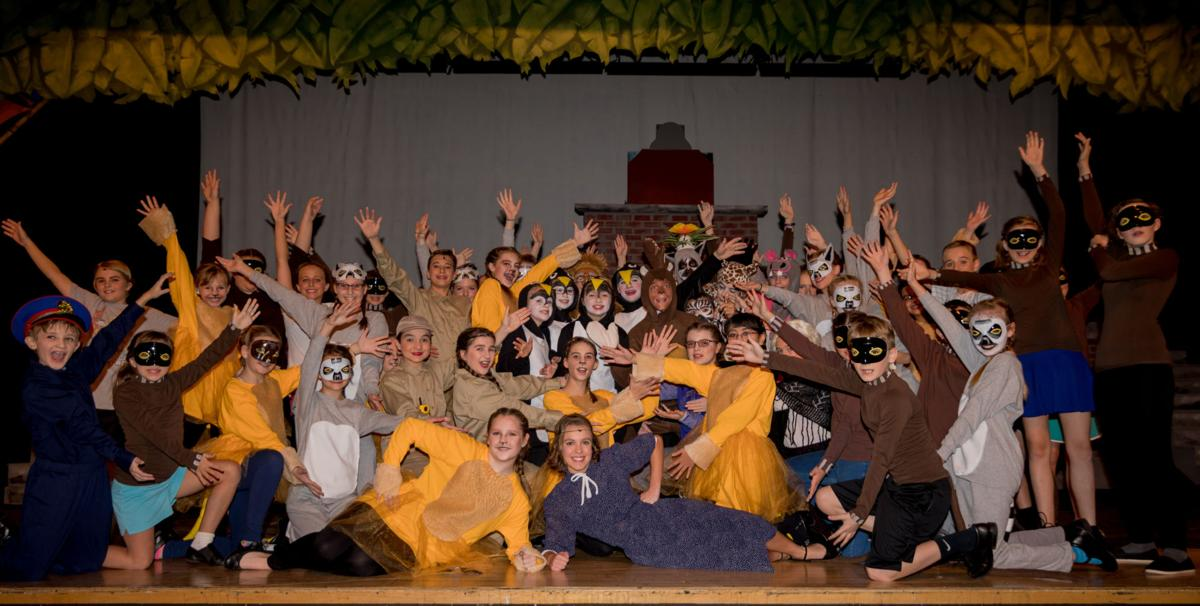 'Madagascar Jr.' to grace Livonia stage
