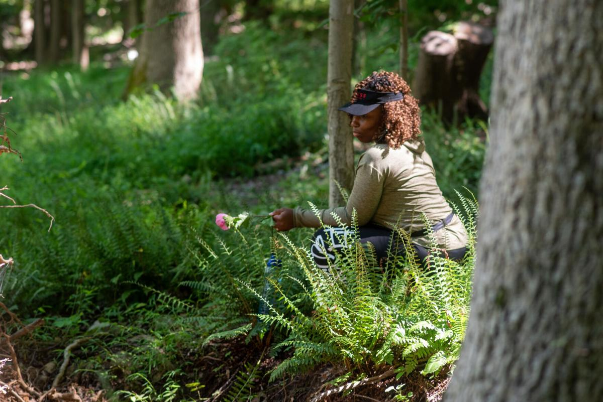 What is 'forest bathing'?