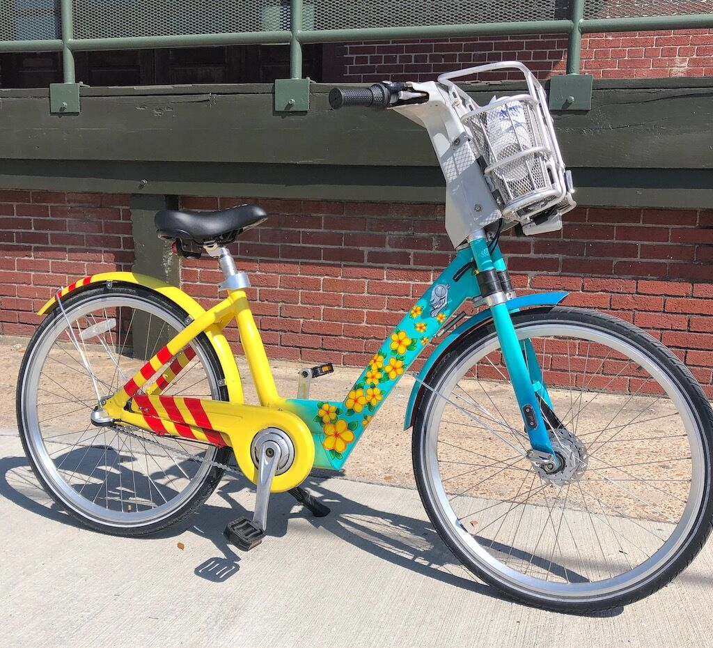Caroline Truong's painted Houston BCycle bicycle – web.