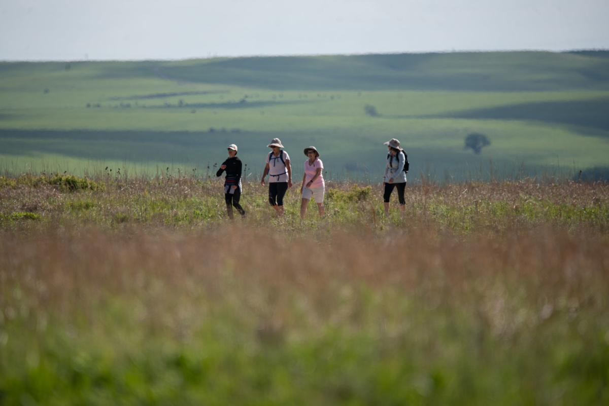 From left, Theresa LeValley, Shelley LeValley, Janet Brown and Kristy Beever walk along the trail at Tallgrass Prairie National Preserve on Tuesday.