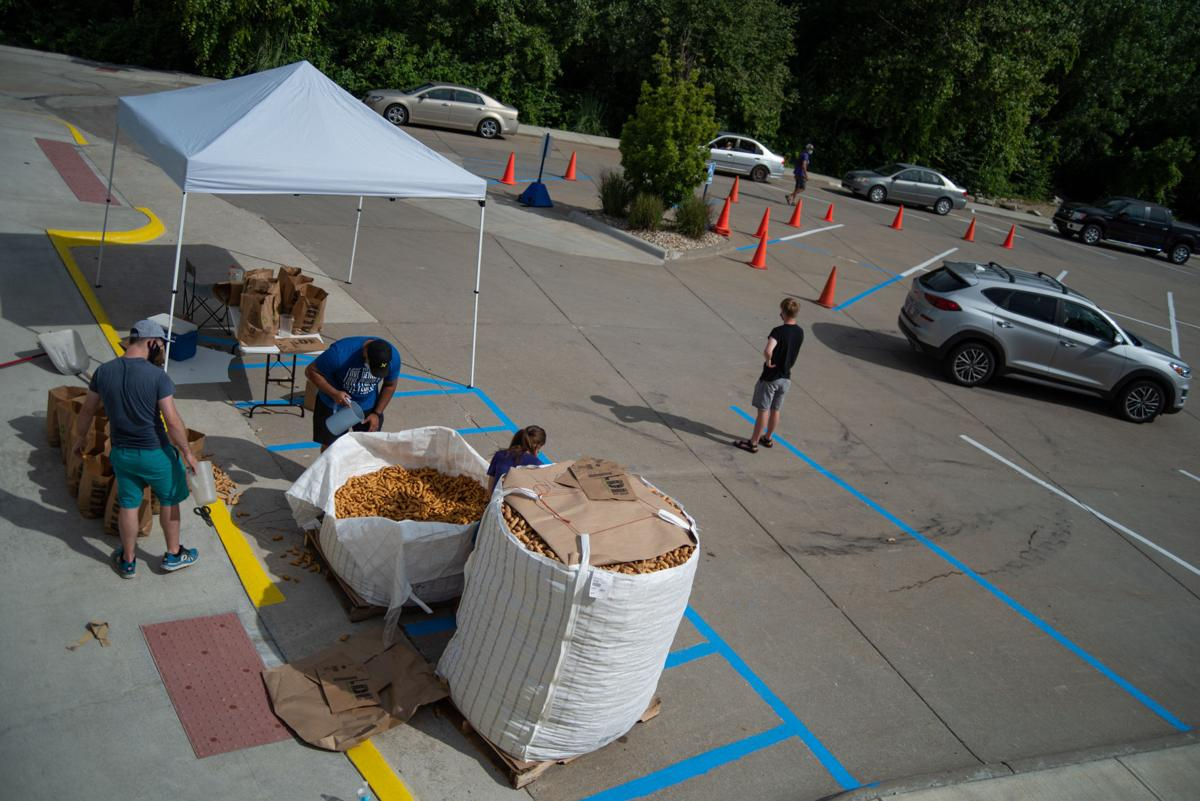 Free bags of potatoes are available for pickup from 9:00 a.m. to 5:00 p.m. at University Christian Church on Saturday.