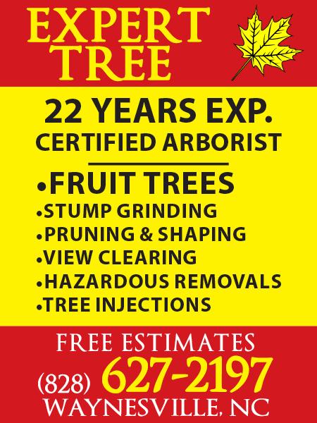 Expert Tree (Rev 7/8/19)